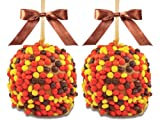 Gourmet Caramel Apples - Candy Dipped - 2 Gift Pack, Set of 2 apples with Reeses Pieces