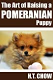 The Art of Raising a Pomeranian Puppy