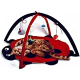 Cat Activity Center with Hanging Toy Balls, Mice & More - Helps Cats Get Exercise & Stay Active - Best Cat Toys on Amazon