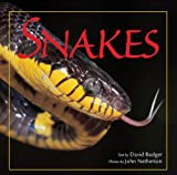 Snakes (0785828427) by Badger, David