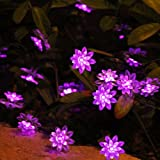 Innoo Tech Everbright Solar Powered 80 LED String Fairy Lights, Double Lotus Flower Covers for Outdoor, Garden, Patio, Lawn, Chrismas trees, Party, Wedding(Pink+Purple)
