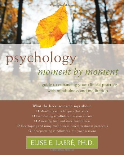 Psychology Moment by Moment: A Guide to Enhancing Your...