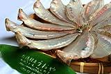 【日本海産】柳カレイの一夜干(大サイズ1尾)