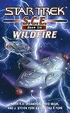 Star Trek: Corps of Engineers: Wildfire (Star Trek: SCE Book 6)