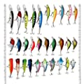 LotFancy 30 PCS Sorts of Fishing Lures Crankbaits Hooks Minnow Baits Tackle, Length From 1.57 to 3.66 Inches by LotFancy