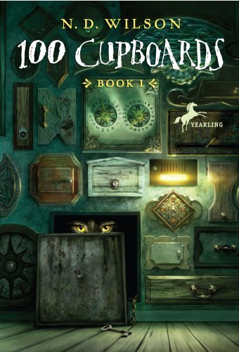 Kids on Fire: The 100 Cupboards Chapter Books