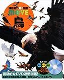 鳥 (講談社の動く図鑑MOVE)