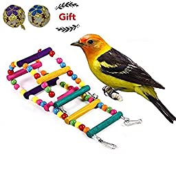 Dekool Handmade Bird Toy 8 Steps Colorful Wooden Ladder for Parrrot ( Length : 18 Inche)