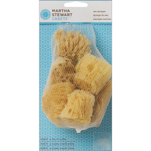 Martha Stewart 32228 Sea Sponge, Set Of 6 front-916236