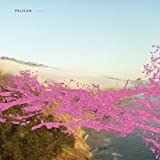 Pink Mammoth [Vinyl]