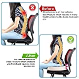 Orthopedic Coccyx Memory Foam Seat Cushion for Car, Office, Home and Travel, Helps with Lower Back, Hemorrhoid, Tailbone and Sciatica Pain Relief, Proper Spine Alignment,Hip Support