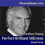 Perfect Brilliant Stillness | David Carse
