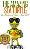 The Amazing Sea Turtle: Fun Facts and Pictures for Kids!
