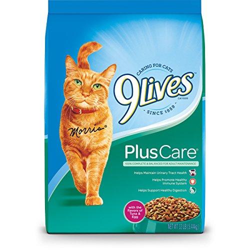 Cheapest  Lb Cat Food