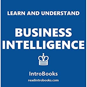 Learn and Understand Business Intelligence Audiobook