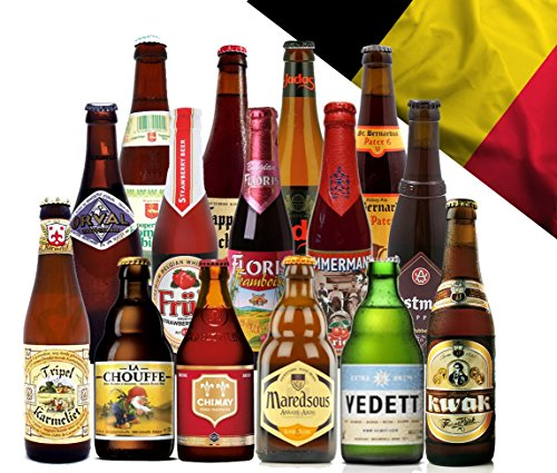 large-belgium-beer-mixed-selection-15-bottles