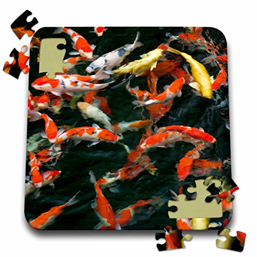 Fish In Backyard Pond Crossword :  Fish In Pond  Na02 Dpb0004  Douglas Peebles  10X10 Inch Puzzle (Pzl