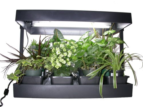 Grow Light System Set Indoor Plant Seed Starter Garden Box Kit Herb Vegetable Ebay