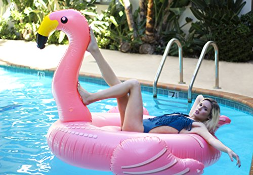flamingo inflatable floatie large ride on blow up pool toy swimming summer fun games pink. Black Bedroom Furniture Sets. Home Design Ideas