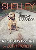 Shelley The Lifeboat Labrador
