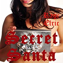 Secret Santa: First Anal Sex for Noelle | Livre audio Auteur(s) : Rage Elric Narrateur(s) : Jackie Marie