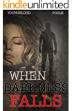 When Darkness Falls: A Romantic Suspense Novel