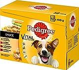 Pedigree Hundefutter in Sauce
