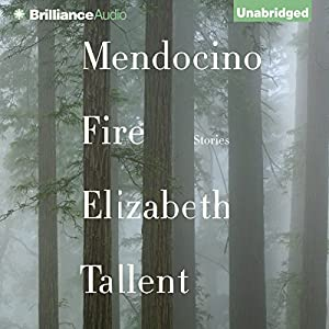 Mendocino Fire Audiobook