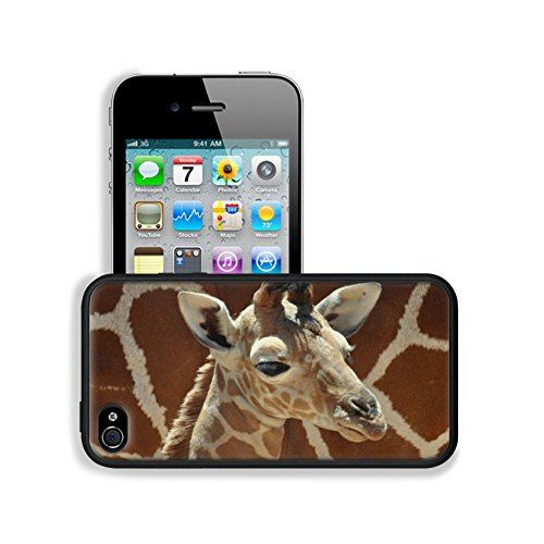 Giraffe Small Calf Face Pattern Cute Baby Africa Wildlife Animal Apple Iphone 4 / 4S Snap Cover Premium Leather Design Back Plate Case Customized Made To Order Support Ready 4 7/16 Inch (112Mm) X 2 3/8 Inch (60Mm) X 7/16 Inch (11Mm) Luxlady Iphone_4 4S Pr front-991926