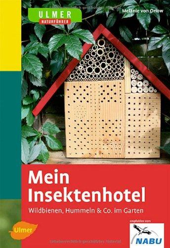 hummeln bienen wespen und hornissen gemeinsamkeiten und unterschiede. Black Bedroom Furniture Sets. Home Design Ideas