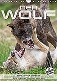 Emotionale Momente: Der Wolf. (Wandkalender 2017 DIN A4 hoch): Der Wolf in all seinen Facetten. Ein