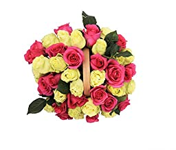 50 Mother\'s Day Farm Fresh Hot Pink and Green Roses Bouquet By JustFreshRoses | Long Stem Fresh Hot Pink and Green Rose Delivery | Farm Fresh Flowers