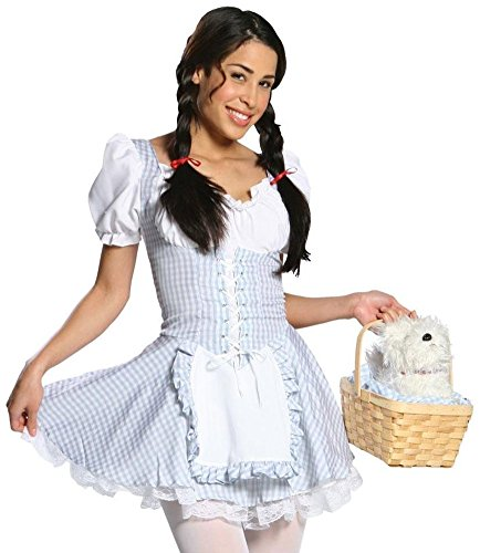 Delectable Dorothy Costume - Teen
