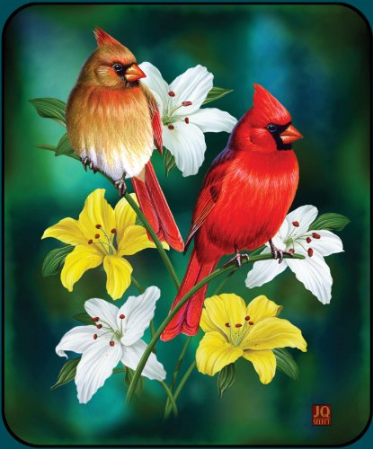 Spring Cardinals High Quality Plush Raschel Queen Size Blanket front-560693