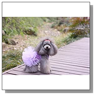 Hqclothingbox Fashion Puppy Dog Princess Dress Dog Cherry Lace Skirt Pet Dog Tutu Dress Purple
