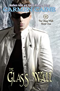 The Glass Wall by Madison Adler ebook deal