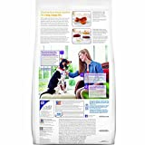 Hills Science Diet Adult Advanced Fitness Chicken & Barley Recipe Dry Dog Food, 38.5-Pound Bag