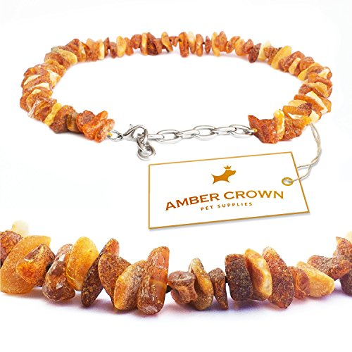 baltic-amber-flea-and-tick-collar-with-adjustable-chain-for-dogs-and-cats-10-12-untreated-authentic-