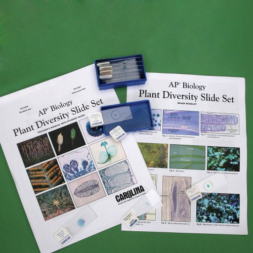 Plant Diversity Microscope Slide Student Set For Ap Biology
