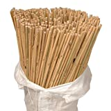 Strong Quality Outdoor Bamboo Cane. Pack of 100, Size 122cm (4ft). Use for Arbors, Trellis, Outdoor Building and Decor