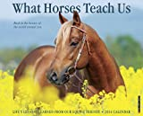 What Horses Teach Us 2014 Wall Calendar