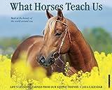 What Horses Teach Us 2014 Wall Calendar