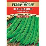 Ferry-Morse 1428 Bean Seeds, Derby (28 Gram Packet)