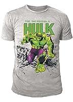 Marvel Comics - Hulk Herren T-Shirt - Creater (Hellgrau) (S-XL)