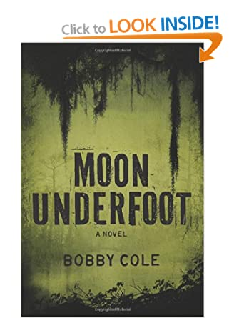 Moon Underfoot - Bill Cole