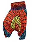 Indiatrendzs Womens Harem Pants Blue/Orange Printed Trouser