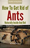How To Get Rid Of Ants - Organic And Green Housecleaning Techniques For Inside And Out