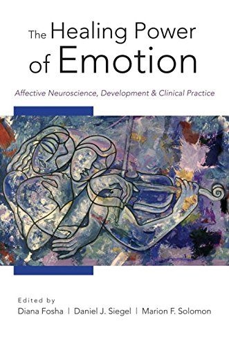 The Healing Power of Emotion (Norton Series on Interpersonal Neurobiology)