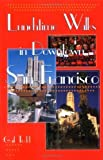 img - for Lunchtime Walks in Downtown San Francisco by Gail Todd (1998-11-03) book / textbook / text book