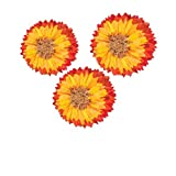 Sunflower Hanging Decoration Kit